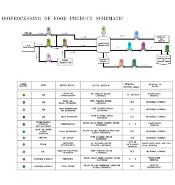 Bioprocessing of food products schematic
